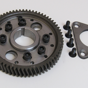 Adjustable Cam Gear Assembly
